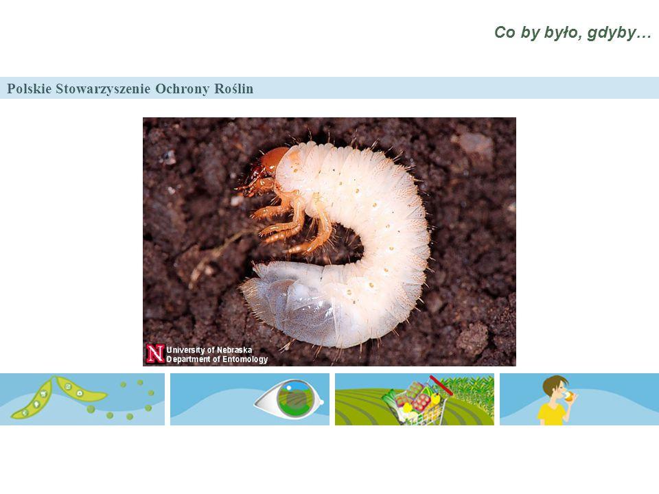 Polskie Stowarzyszenie Ochrony Roślin Co by było, gdyby…