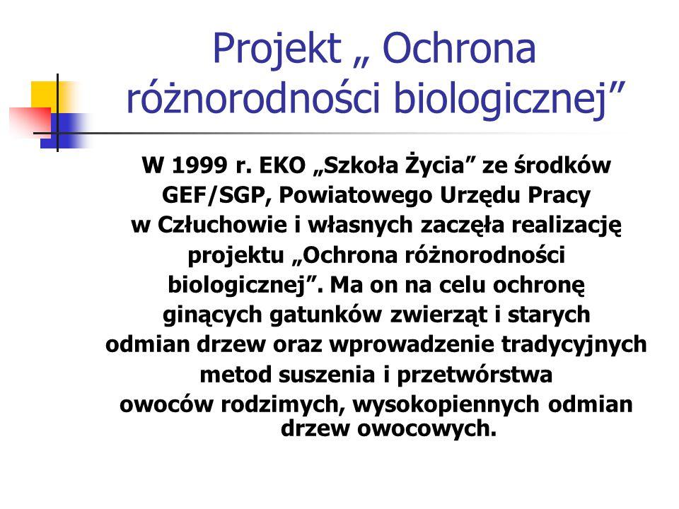 """Projekt """" Ochrona różnorodności biologicznej"""" W 1999 r. EKO """"Szkoła Życia"""" ze środków GEF/SGP, Powiatowego Urzędu Pracy w Człuchowie i własnych zaczęł"""