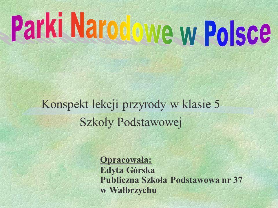 Konspekt lekcji przyrody w klasie 5 Szkoły Podstawowej Opracowała: Edyta Górska Publiczna Szkoła Podstawowa nr 37 w Wałbrzychu