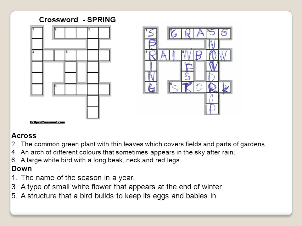 Crossword - SPRING Across 2.The common green plant with thin leaves which covers fields and parts of gardens. 4.An arch of different colours that some