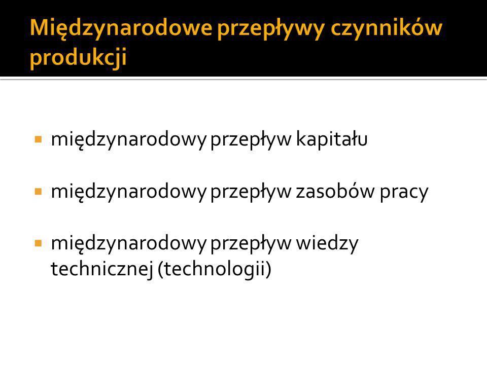  Wiodące branże:  Usługi finansowe  Usługi informatyczne  Usługi zarządzania zasobami kadrowymi  Motoryzacja  Elektronika  Sektor chemiczny  Handel hurtowy i detaliczny  Liczba filii zagranicznych KTN w Polsce 14 469 (2001 r.)