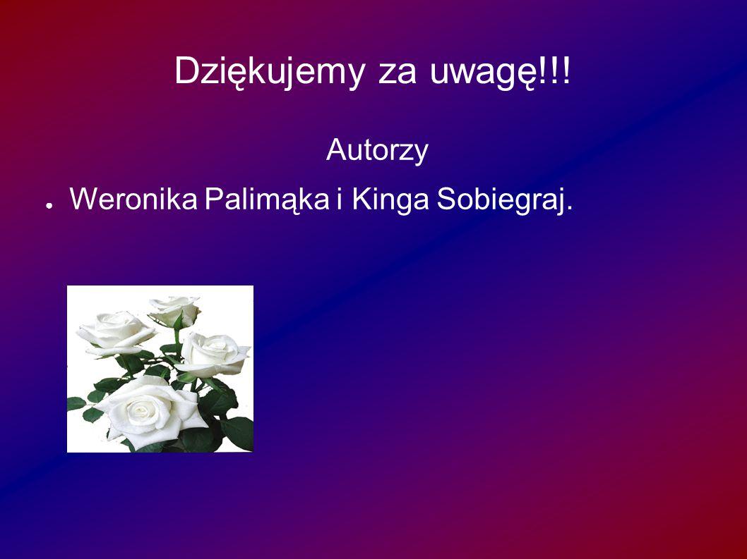 Dziękujemy za uwagę!!! Autorzy ● Weronika Palimąka i Kinga Sobiegraj.
