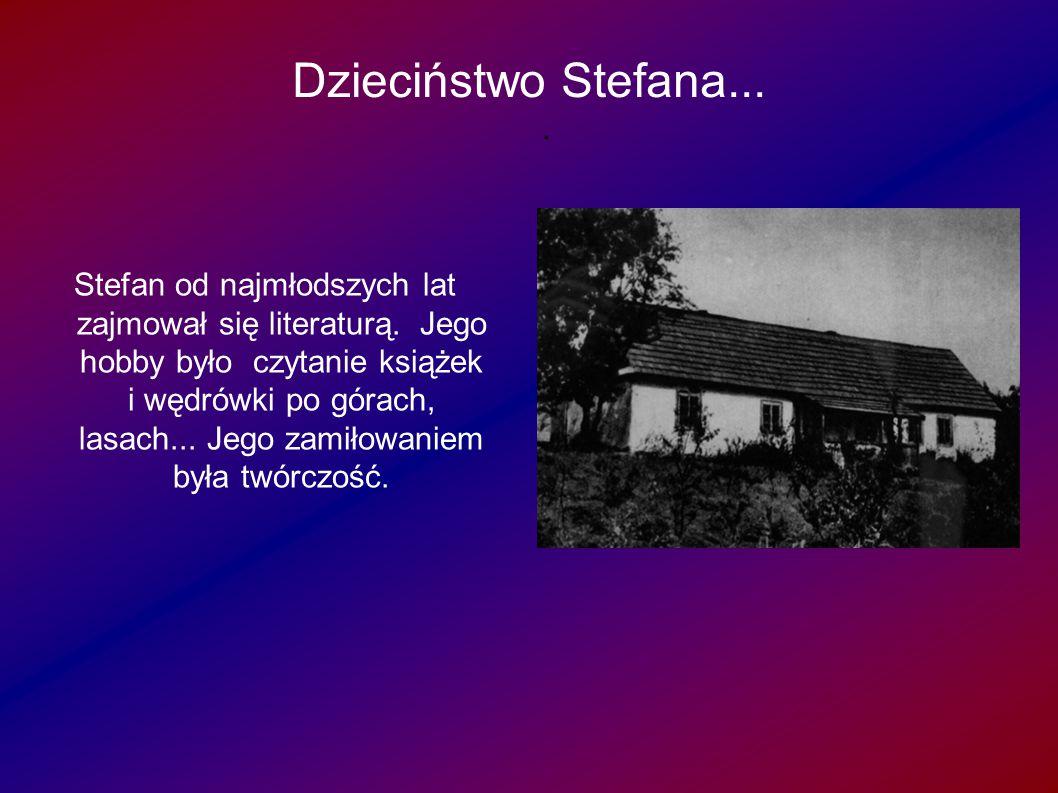 Dzieciństwo Stefana... a... Stefan od najmłodszych lat zajmował się literaturą. Jego hobby było czytanie książek i wędrówki po górach, lasach... Jego