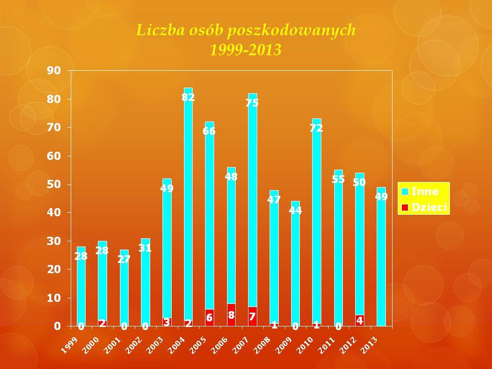 Liczba osób poszkodowanych 1999-2013