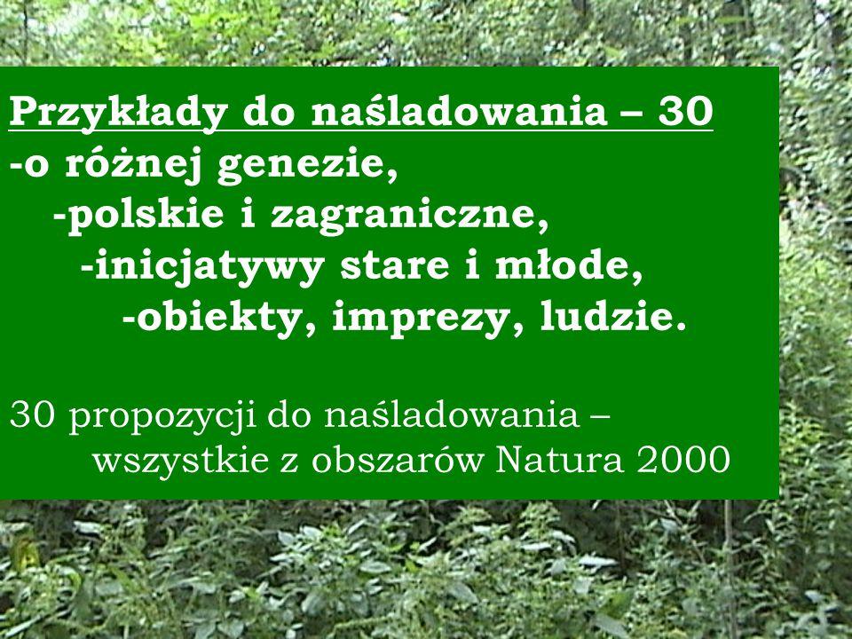 Przykłady do naśladowania – 30 -o różnej genezie, -polskie i zagraniczne, -inicjatywy stare i młode, -obiekty, imprezy, ludzie.