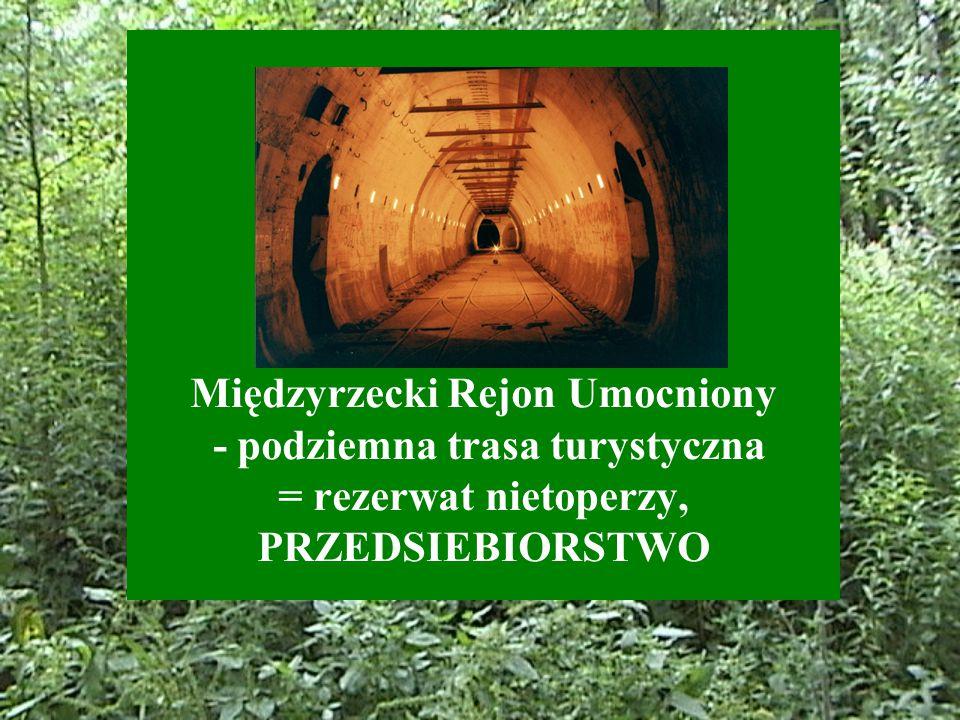 Międzyrzecki Rejon Umocniony - podziemna trasa turystyczna = rezerwat nietoperzy, PRZEDSIEBIORSTWO