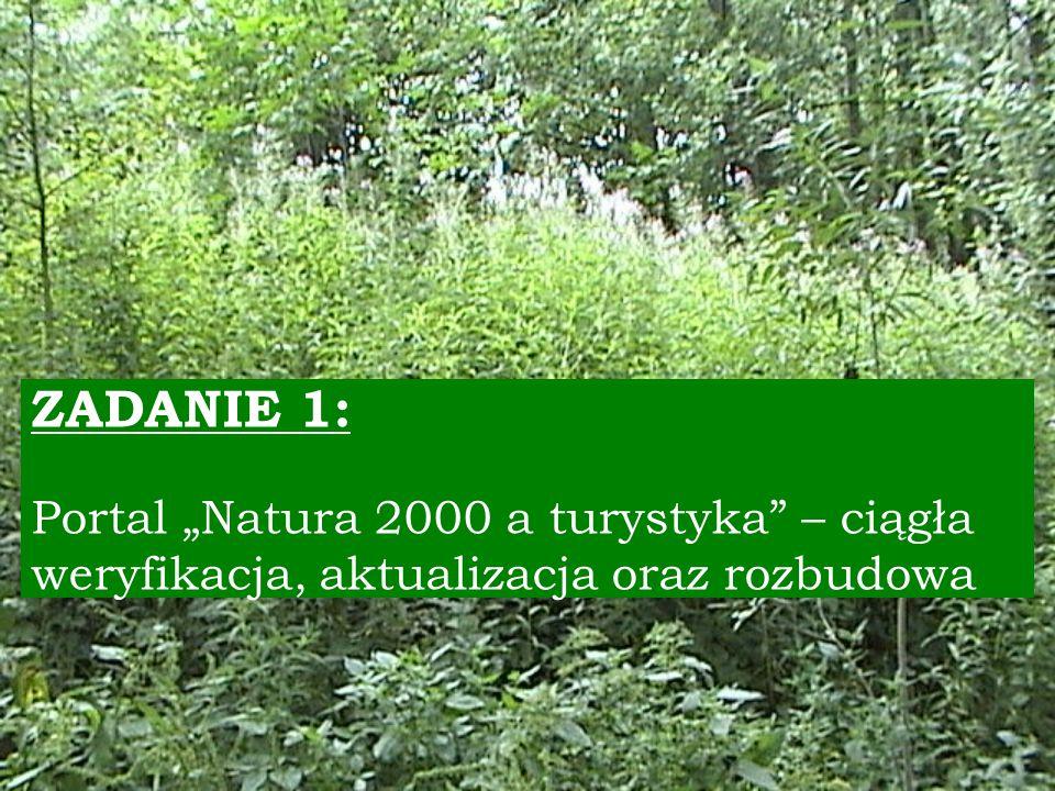 III edycja dla uczniów szkół gimnazjalnych Rok szkolny 2009/2010 r.