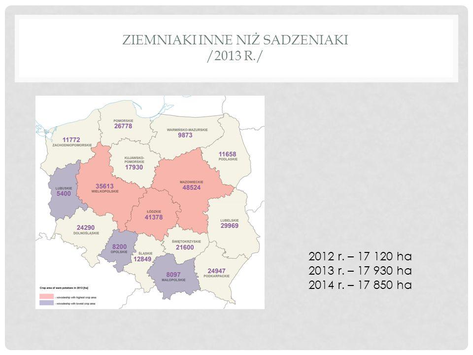 ZIEMNIAKI INNE NIŻ SADZENIAKI /2013 R./ 2012 r. – 17 120 ha 2013 r. – 17 930 ha 2014 r. – 17 850 ha