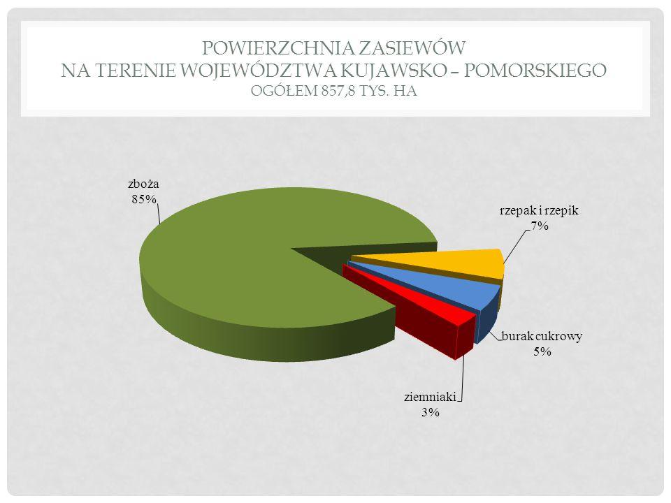SADZENIAKI - WYSOKIE STOPNIE KWALIFIKACJI /2013 R./ 2012 r.