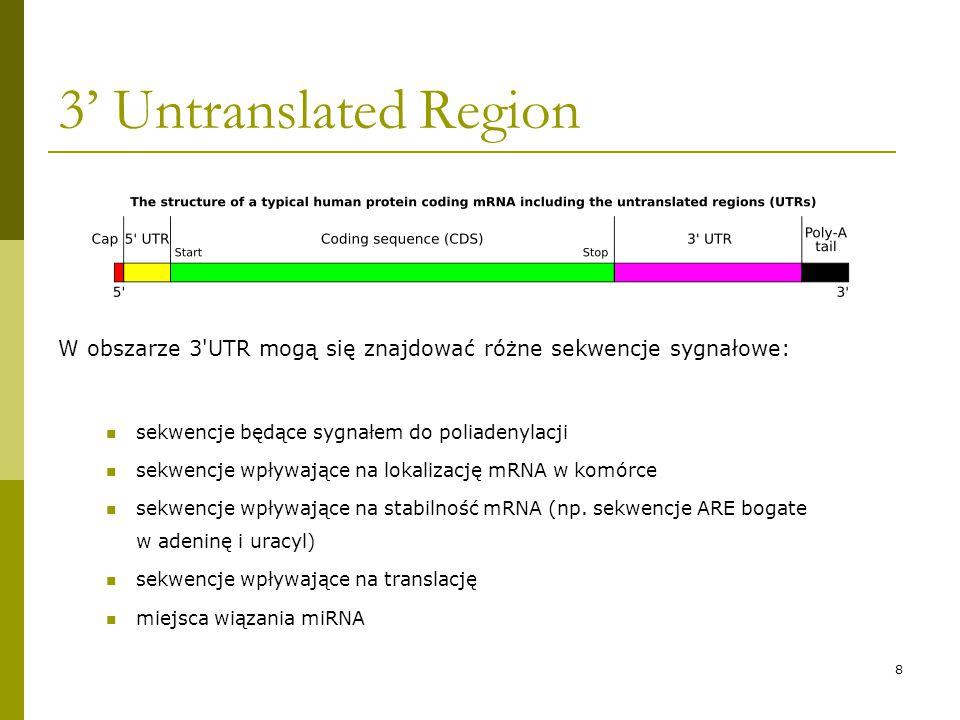 9 AU – rich elements (ARE) KlasaCharakterystyka ARE I Kilka rozproszonych kopii pentameru AUUUA ARE II Przynajmniej dwa pokrywające się motywy UUAUUUA(U/A)(U/A) ARE III Regiony bogate w AU, ale nie zdefiniowane jako motyw AUUUA ARE to region w sekwencji mRNA, w którym często występują nukleotydy A (adenina) i U (uracyl), który wskazuje mRNA do degradacji.