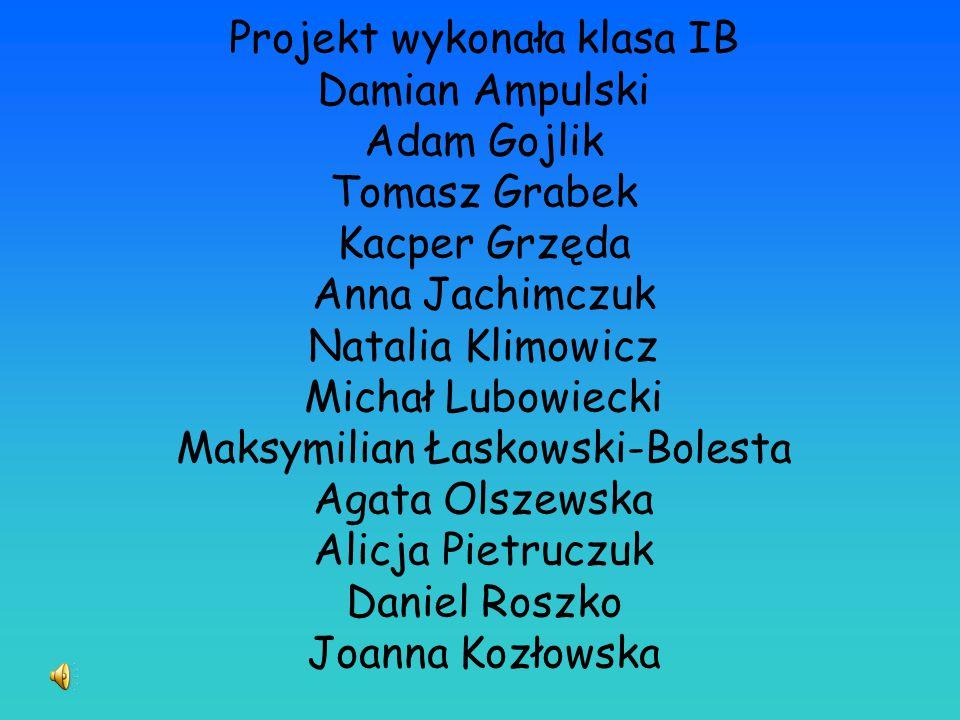 Projekt wykonała klasa IB Damian Ampulski Adam Gojlik Tomasz Grabek Kacper Grzęda Anna Jachimczuk Natalia Klimowicz Michał Lubowiecki Maksymilian Łask