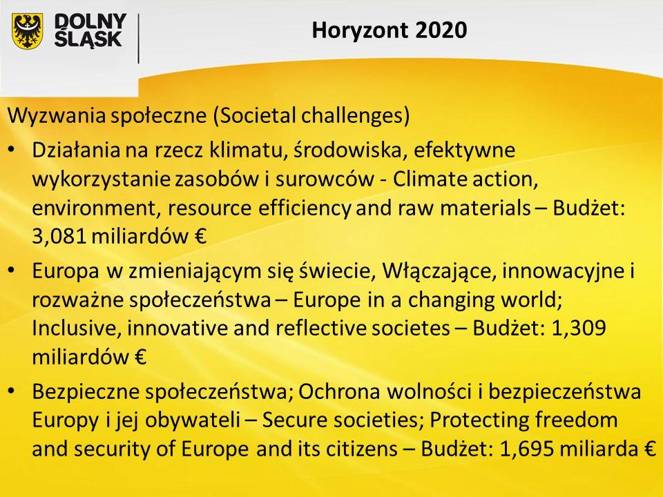 Horyzont 2020 Wyzwania społeczne (Societal challenges) Działania na rzecz klimatu, środowiska, efektywne wykorzystanie zasobów i surowców - Climate ac