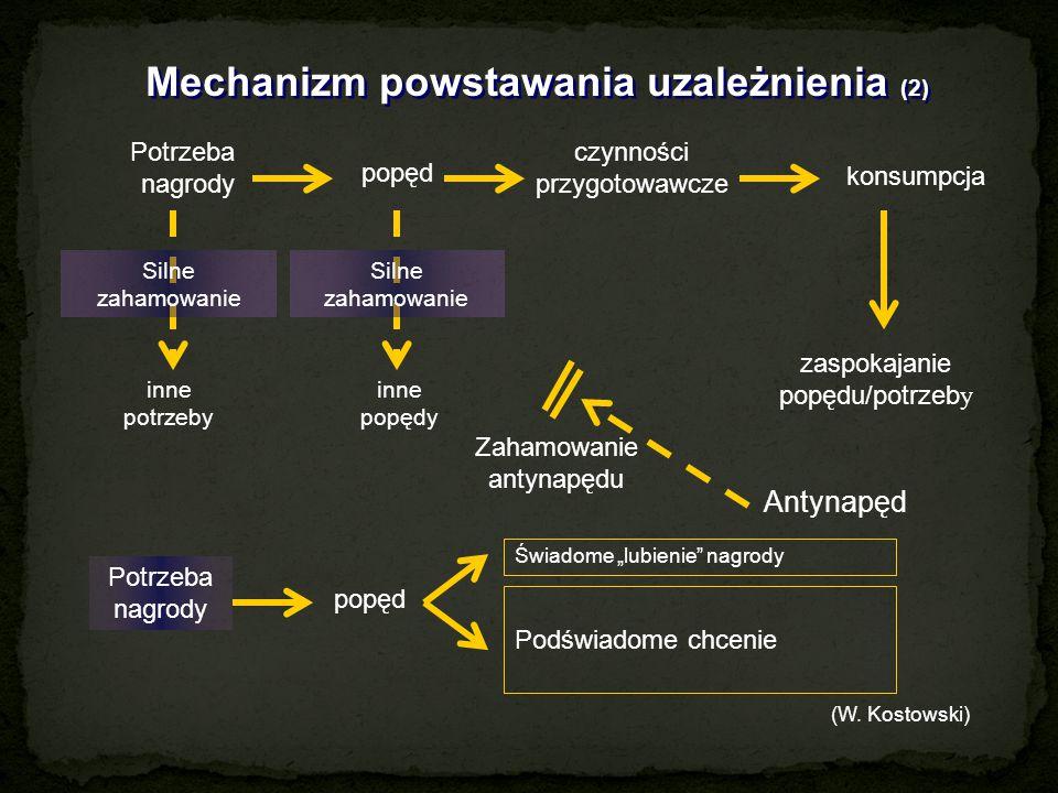 Mechanizm powstawania uzależnienia (2) Potrzeba nagrody popęd czynności przygotowawcze konsumpcja Silne zahamowanie inne potrzeby inne popędy zaspokaj
