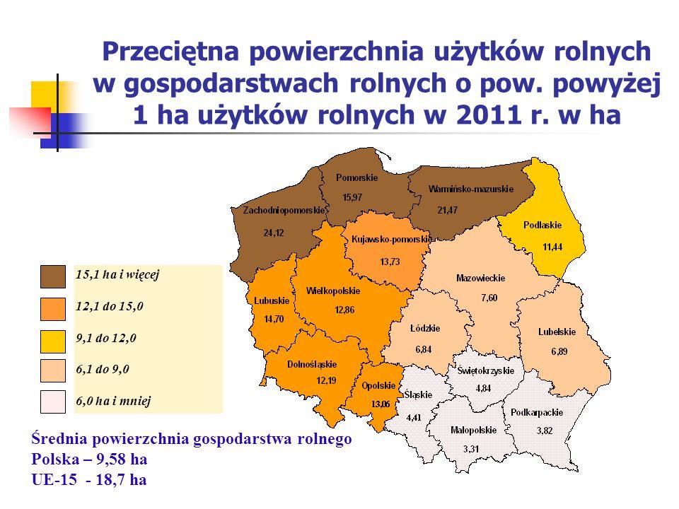 Stan obecny, uwarunkowania formalno-organizacyjne ustawa z 22 października 2004 r.
