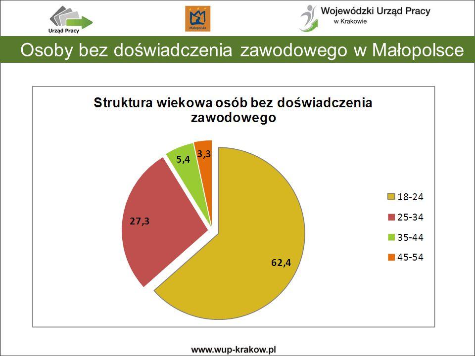 Osoby bez doświadczenia zawodowego w Małopolsce