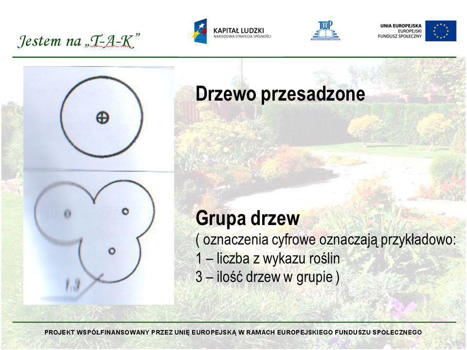 Drzewo przesadzone Grupa drzew ( oznaczenia cyfrowe oznaczają przykładowo: 1 – liczba z wykazu roślin 3 – ilość drzew w grupie )
