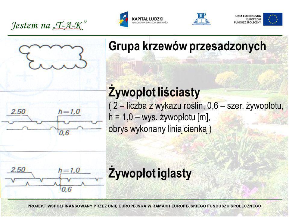 Grupa krzewów przesadzonych Żywopłot liściasty ( 2 – liczba z wykazu roślin, 0,6 – szer. żywopłotu, h = 1,0 – wys. żywopłotu [m], obrys wykonany linią