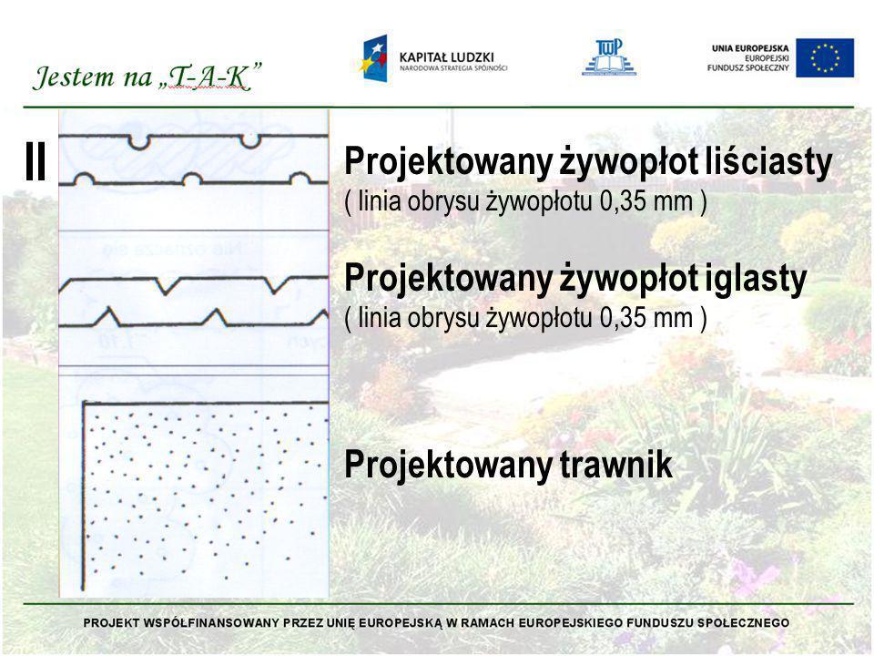 II Projektowany żywopłot liściasty ( linia obrysu żywopłotu 0,35 mm ) Projektowany żywopłot iglasty ( linia obrysu żywopłotu 0,35 mm ) Projektowany tr