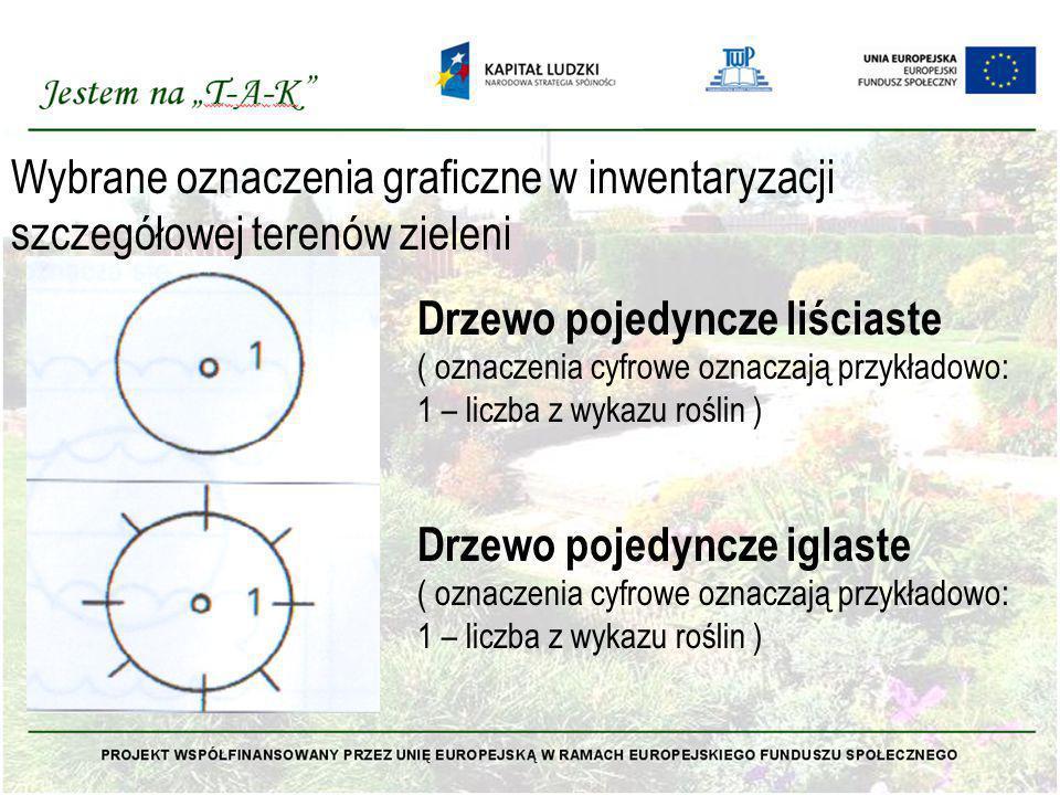 Wybrane oznaczenia graficzne w inwentaryzacji szczegółowej terenów zieleni Drzewo pojedyncze liściaste ( oznaczenia cyfrowe oznaczają przykładowo: 1 –