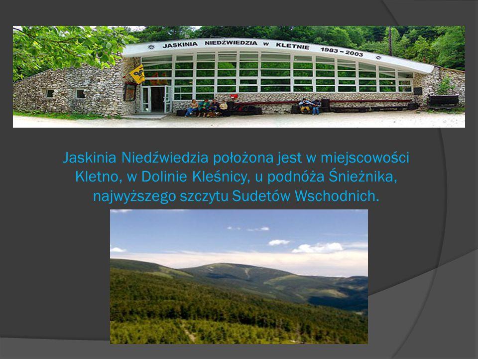 Jaskinia Niedźwiedzia jest bez wątpienia najładniejszą jaskinią w Sudetach, a także największą atrakcją w Kletnie.