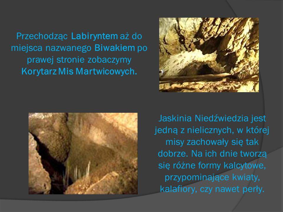 Następnie dochodzimy do Korytarza Stalaktytowego.Na stalaktytach możemy ujrzeć kropelki wody.
