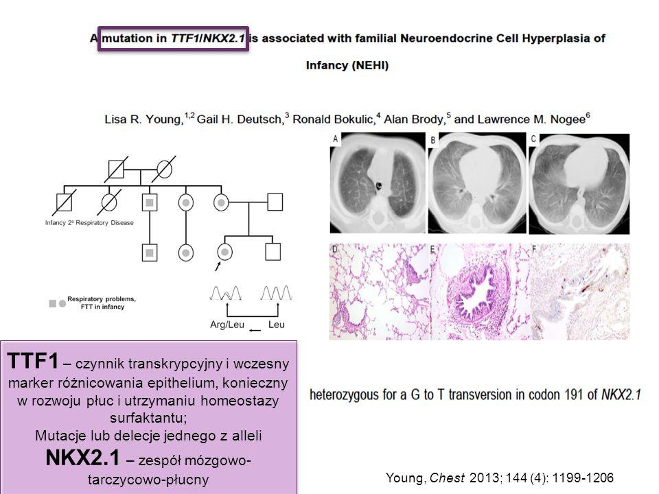 Young, Chest 2013; 144 (4): 1199-1206 TTF1 – czynnik transkrypcyjny i wczesny marker różnicowania epithelium, konieczny w rozwoju płuc i utrzymaniu ho