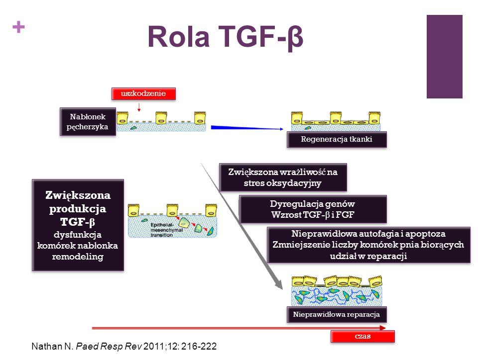 + Metody diagnostyczne BadanieZaPrzeciwKomentarz Bronchoskopia + BAL Ocena anatomii drzewa tchawiczo- oskrzelowego Znieczulenie ogólne Zakażenia, aspiracje, anomalie rozwojowe mogą być towarzyszące ILD Materiał do badań bakteriologicznych Ryzyko hypoksemii i skurczu oskrzeli Badania komórek (hemosyderoza, PAP) Rzadko potwierdza rozpoznanie ostateczne TKWROcena zmianZnieczulenieKonieczna współpraca radiolog-anestezjolog Możliwość rozpoznania EkspozycjaALARA Wybór miejsca do biopsji Kuo Ch, Young L.