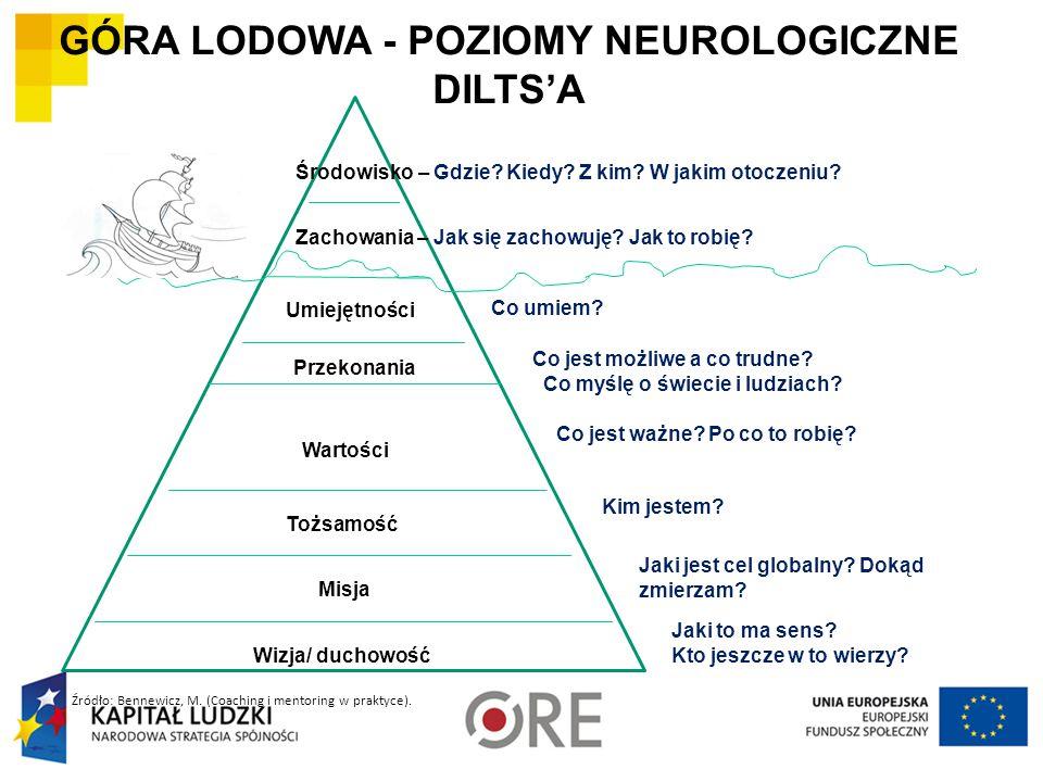 GÓRA LODOWA - POZIOMY NEUROLOGICZNE DILTS'A Środowisko – Gdzie.