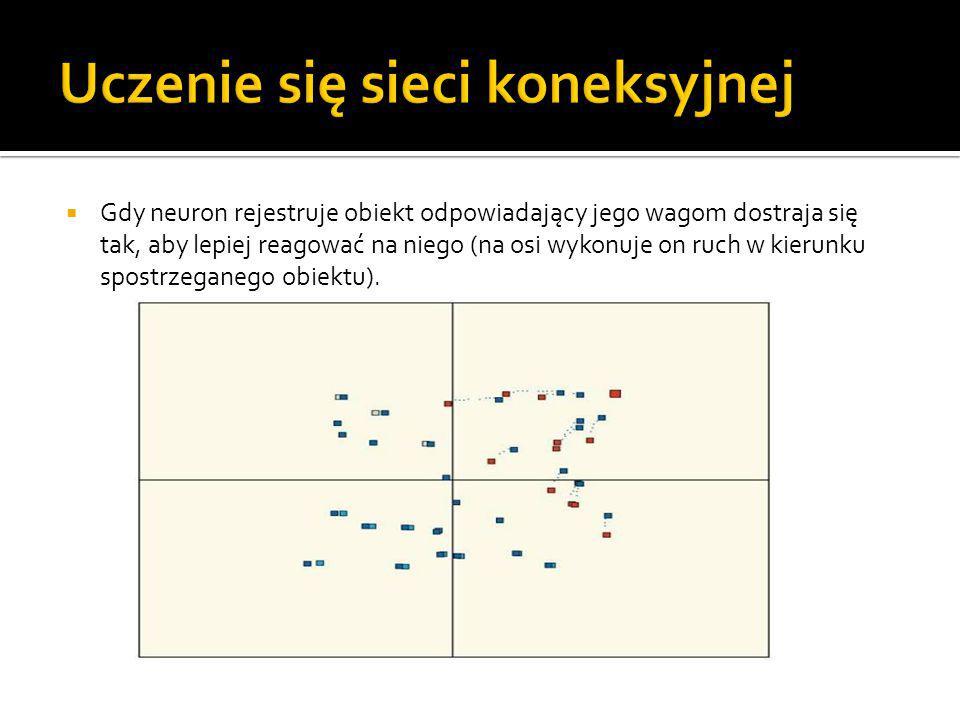  Gdy neuron rejestruje obiekt odpowiadający jego wagom dostraja się tak, aby lepiej reagować na niego (na osi wykonuje on ruch w kierunku spostrzegan