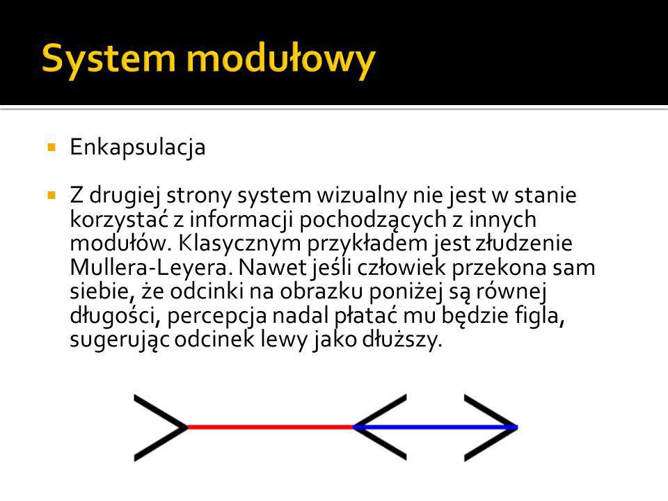  Enkapsulacja  Z drugiej strony system wizualny nie jest w stanie korzystać z informacji pochodzących z innych modułów. Klasycznym przykładem jest z