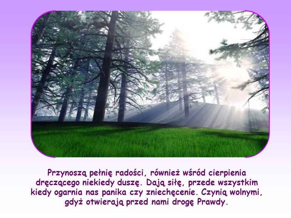 Tak, słowa Boże zaspokajają ducha stworzonego dla nieskończoności; oświecają wewnętrznie nie tylko umysł, ale i całe istnienie, ponieważ są światłem, miłością i życiem.
