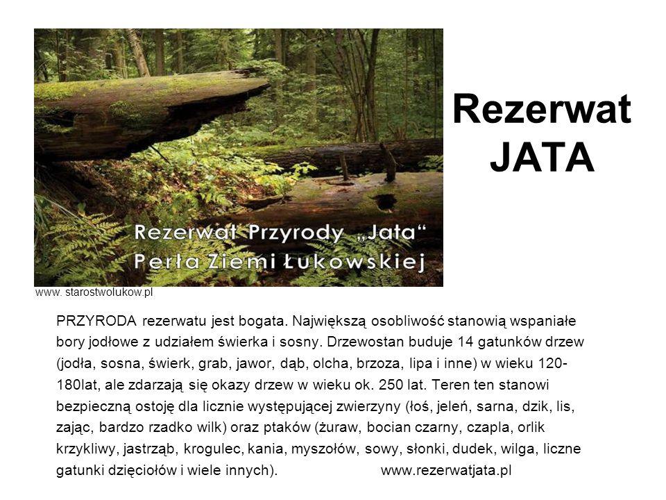 Rezerwat JATA PRZYRODA rezerwatu jest bogata. Największą osobliwość stanowią wspaniałe bory jodłowe z udziałem świerka i sosny. Drzewostan buduje 14 g