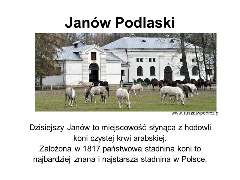 Janów Podlaski Dzisiejszy Janów to miejscowość słynąca z hodowli koni czystej krwi arabskiej. Założona w 1817 państwowa stadnina koni to najbardziej z
