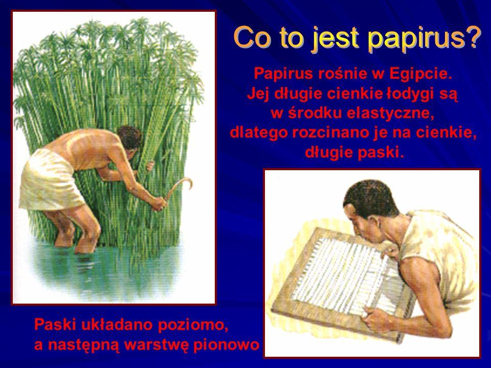 Papirusy Najstarszy fragment Ewangelii Jana (100 lat po narodzeniu Jezusa) Kopia listu Pawła do Rzymian (200 lat po Chrystusie)  Autorzy - ludzie pod