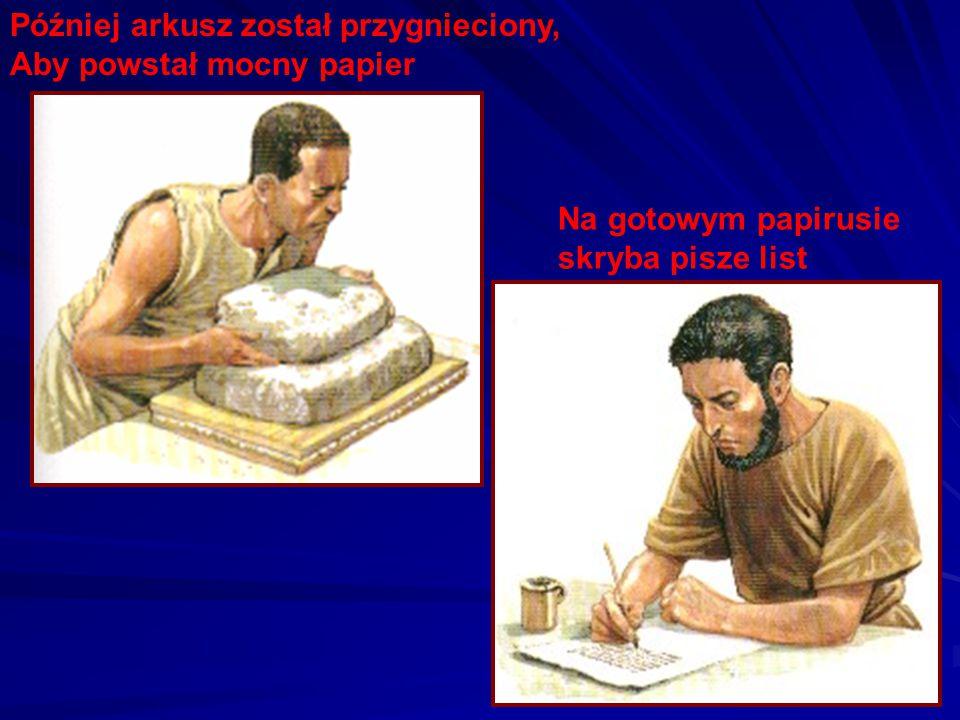 Papirus rośnie w Egipcie. Jej długie cienkie łodygi są w środku elastyczne, dlatego rozcinano je na cienkie, długie paski. Paski układano poziomo, a n