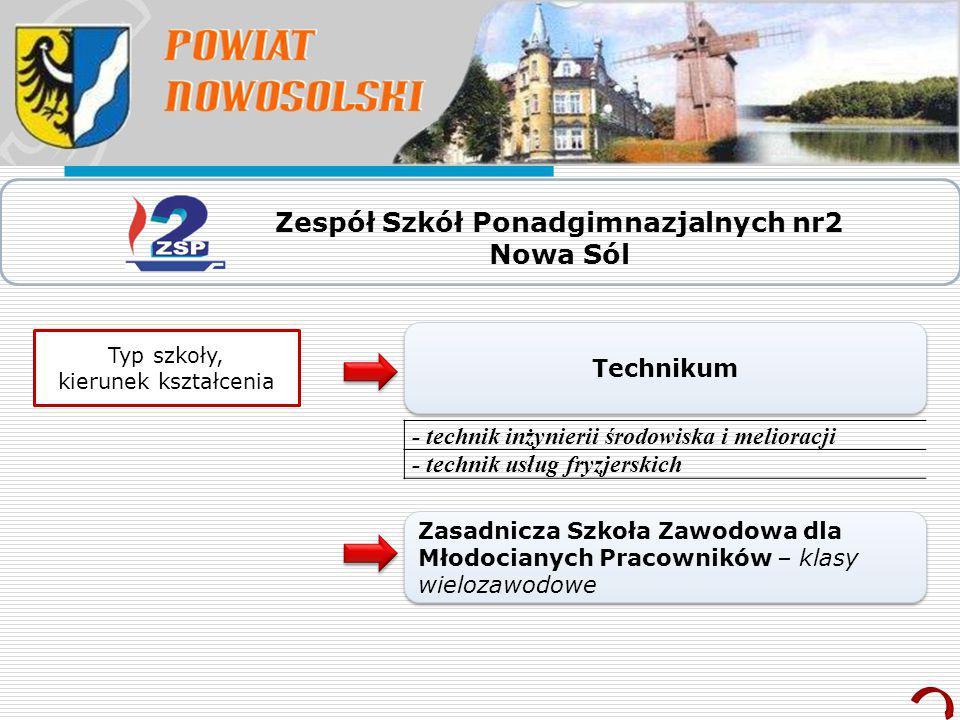 Zespół Szkół Ponadgimnazjalnych nr2 Nowa Sól Typ szkoły, kierunek kształcenia Technikum - technik inżynierii środowiska i melioracji - technik usług f