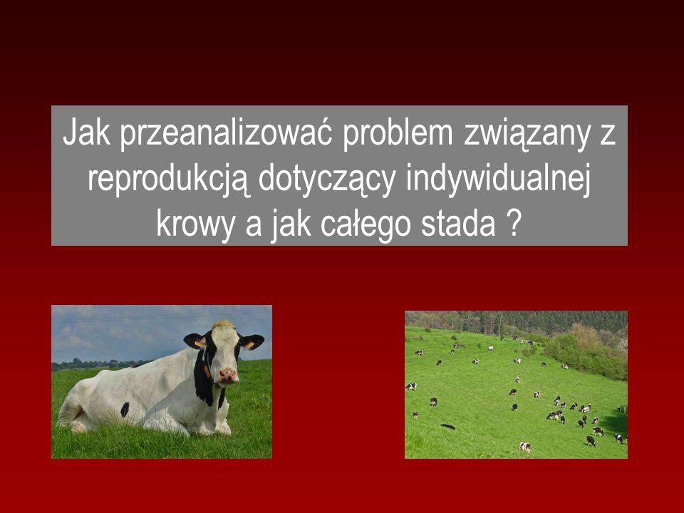Jak przeanalizować problem związany z reprodukcją dotyczący indywidualnej krowy a jak całego stada ?
