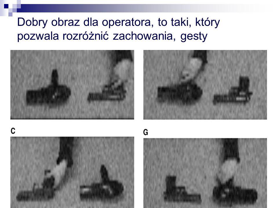 Dobry obraz dla operatora, to taki, który pozwala rozróżnić zachowania, gesty