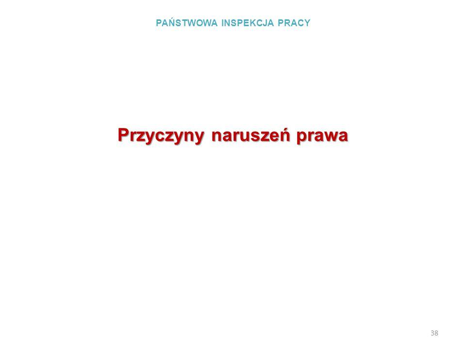 PAŃSTWOWA INSPEKCJA PRACY Przyczyny naruszeń prawa 38