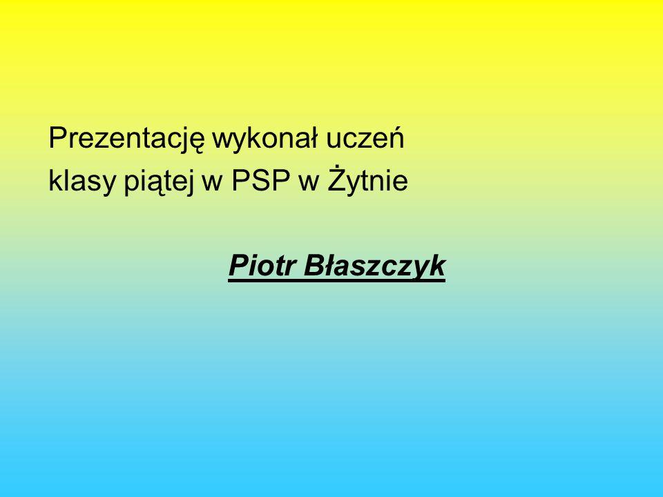Prezentację wykonał uczeń klasy piątej w PSP w Żytnie Piotr Błaszczyk