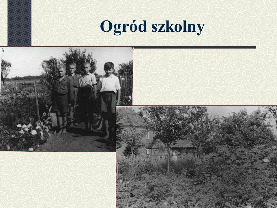 Pierwsza Kadra Kostecki Roman – dyrektor Nowakowa Cecylia Kabaciński Anzelm Nowak Jan 3 klasy – 40 uczniów