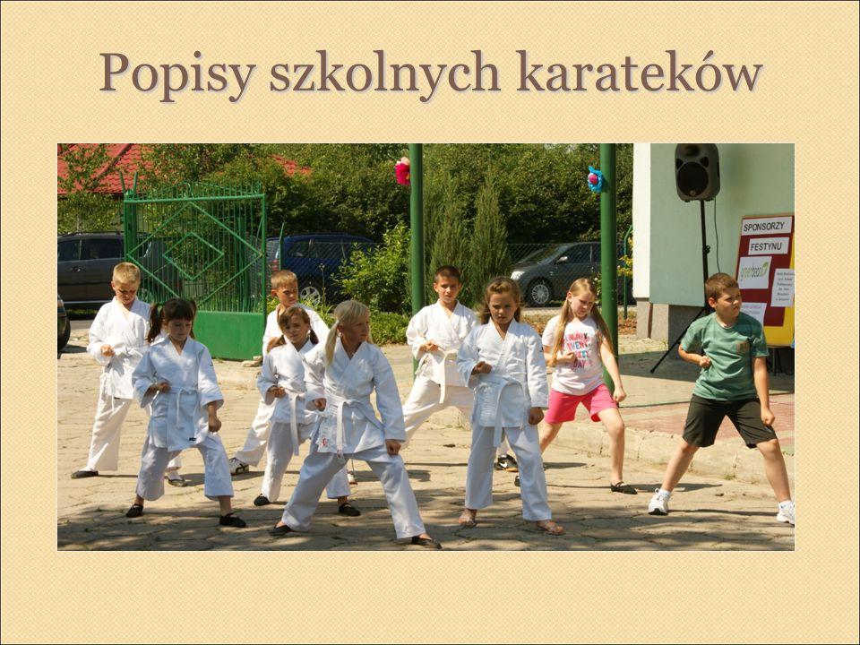 Popisy szkolnych karateków