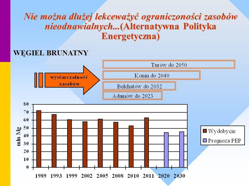 Nie można dłużej lekceważyć ograniczoności zasobów nieodnawialnych...(Alternatywna Polityka Energetyczna) WĘGIEL BRUNATNY