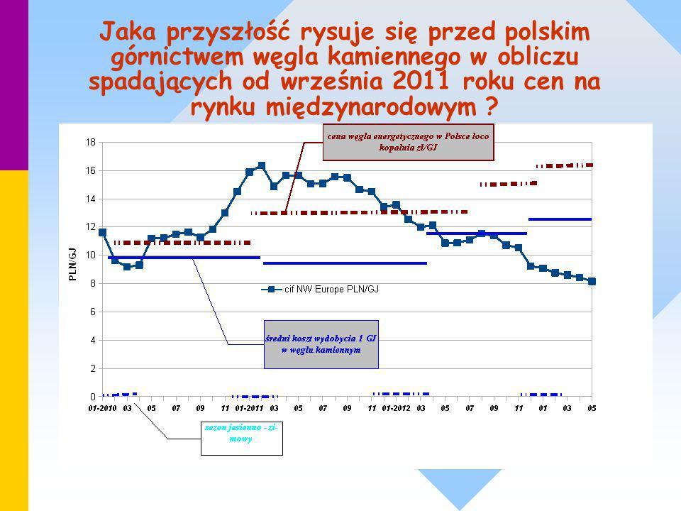 Jaka przyszłość rysuje się przed polskim górnictwem węgla kamiennego w obliczu spadających od września 2011 roku cen na rynku międzynarodowym ?