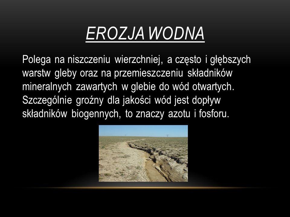 EROZJA WODNA Polega na niszczeniu wierzchniej, a często i głębszych warstw gleby oraz na przemieszczeniu składników mineralnych zawartych w glebie do