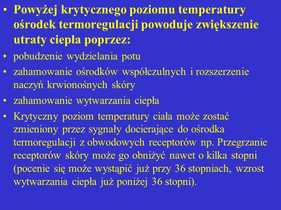 Powyżej krytycznego poziomu temperatury ośrodek termoregulacji powoduje zwiększenie utraty ciepła poprzez: pobudzenie wydzielania potu zahamowanie ośr