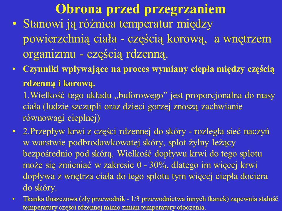 2.Ultrasonoterapia Działanie mechaniczne, efekt cieplny i działanie chemiczne.
