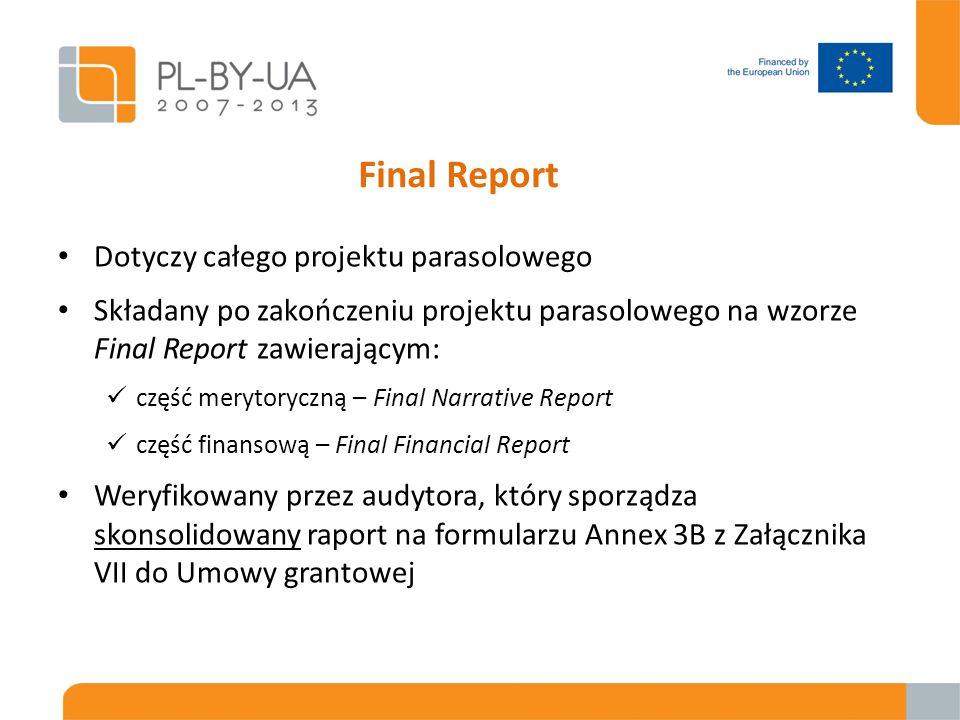 Final Report Dotyczy całego projektu parasolowego Składany po zakończeniu projektu parasolowego na wzorze Final Report zawierającym: część merytoryczn