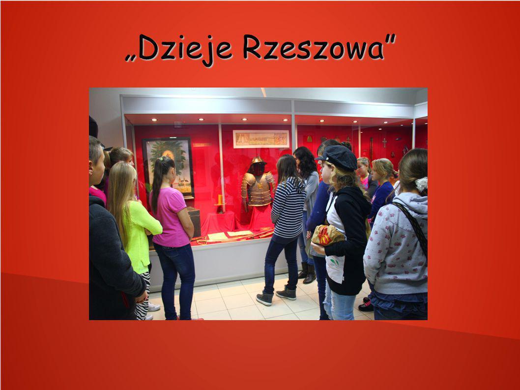 """""""Dzieje Rzeszowa"""