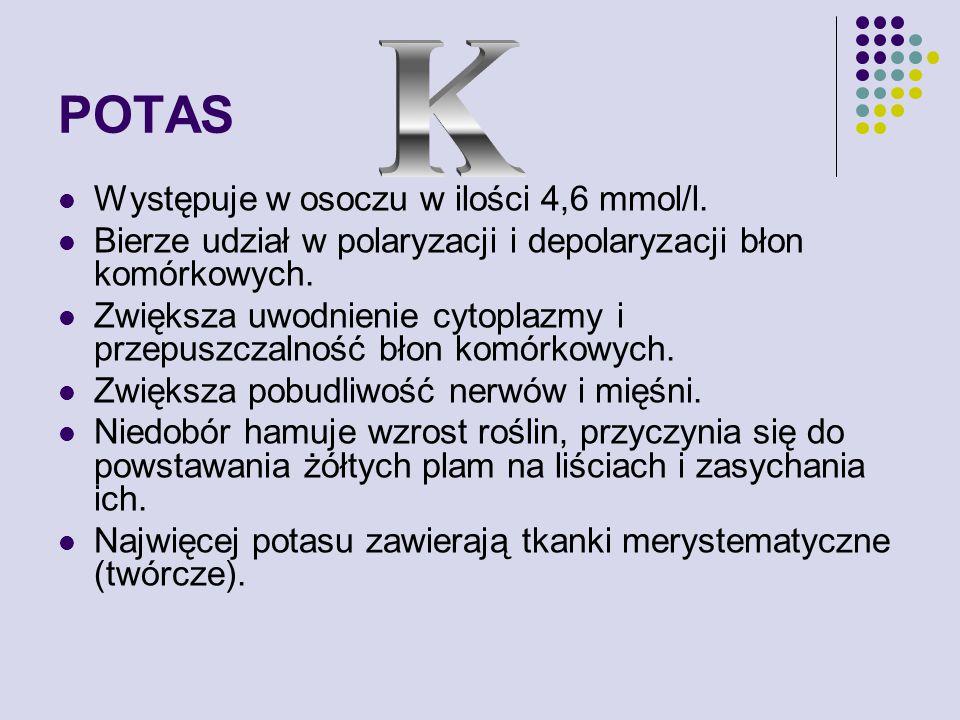 POTAS Występuje w osoczu w ilości 4,6 mmol/l.